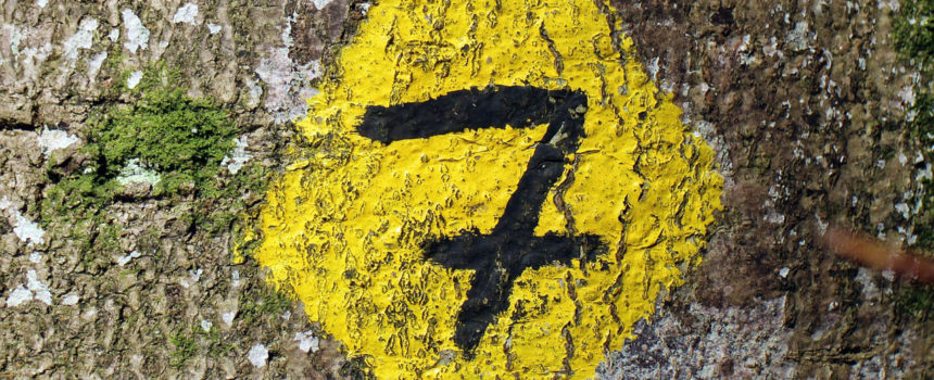 Seven Insightful Questions To Ask Prospects During the Sales Process