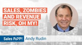 Webinar: Sales and Revenue Risk with Andy Rudin