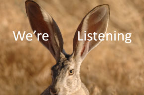 Listening to Our Users: The NEW! Pipeliner CRM Feedback Forum