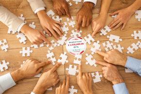 Sales Force – Utilizing Strength for Maximum Productivity