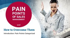 Sales Management Pain Points – Overview