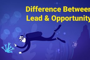 Difference Between Lead and Opportunity
