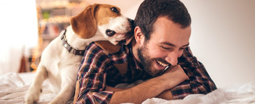 How Dogs Gave Me More Sales Referrals