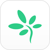 TimeTree App Shared Calendar