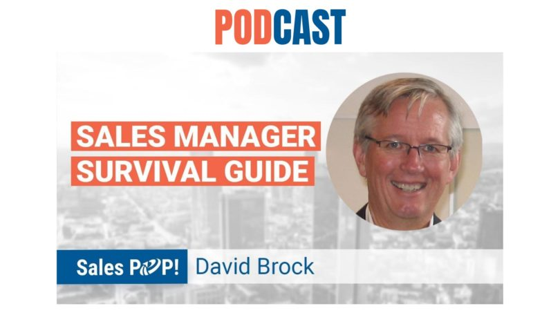 🎧 Sales Manager Survival Guide