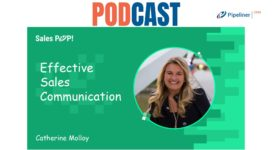 🎧  Effective Sales Communication and Sales Skills