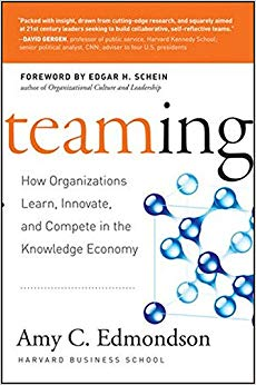 Teaming: How Organizations Learn, Innovate, and Compete in the Knowledge Economy Cover
