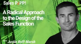 A Radical Approach to the Design of the Sales Function
