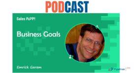 🎧 Business Goals