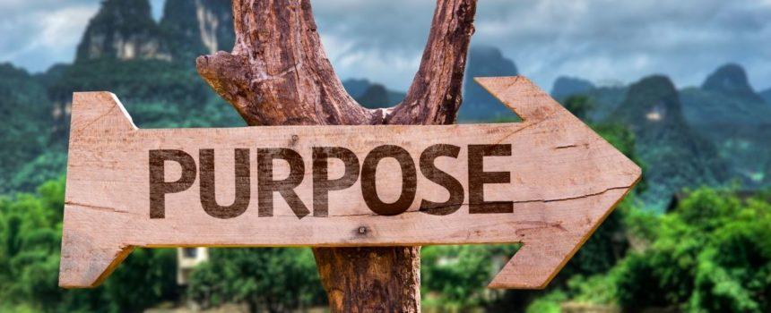 Finding Purpose