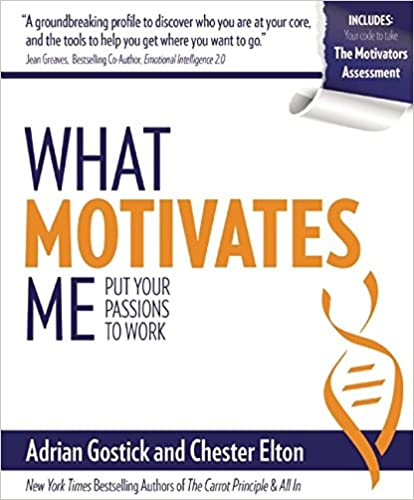 What Motivates Me: Put Your Passions to Work Cover