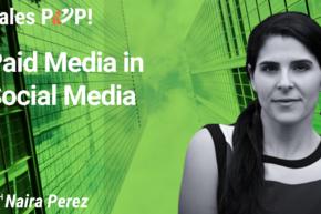 Paid Media in Social Media (video)
