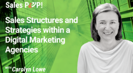 Sales Structures and Strategies within a Digital Marketing Agencies