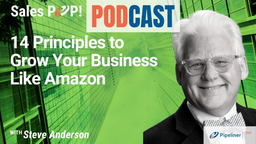 🎧   14 Principles How To Grow Your Business Like Amazon with Steve Anderson
