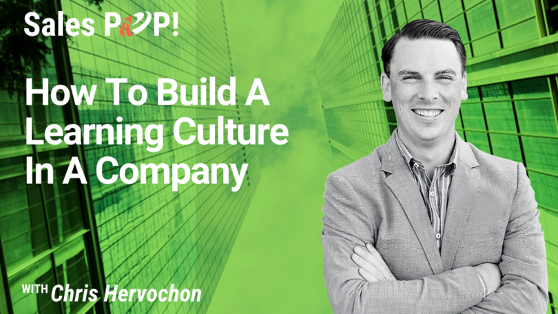 How To Build A Learning Culture In A Company (video)