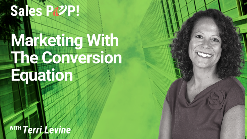 Marketing With The Conversion Equation (video)