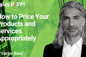 How to Price Your Products and Services  Appropriately (video)