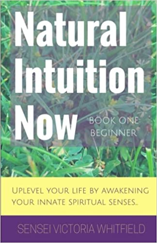 Natural Intuition Now: Beginner Level: Uplevel your life by awakening your innate spiritual senses Cover